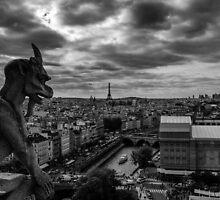 Notre Dame by simonpaul1uk