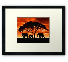Acacia Elephant Sunset Framed Print
