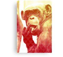 Licking Ape Canvas Print