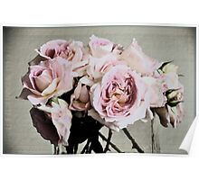 Delicate Roses Poster
