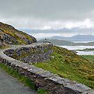 Ring of Kerry - Ireland by Arie Koene