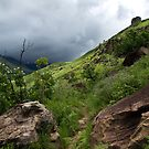 Drakensberg mountains, South Africa by Miguel De Freitas