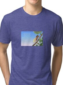 Memories of the Mediterranean  Tri-blend T-Shirt