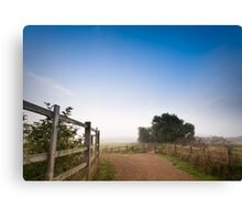 Upton Country Park in the Morning Canvas Print