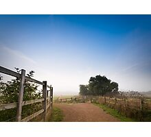 Upton Country Park in the Morning Photographic Print