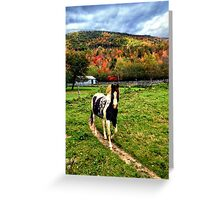 Frye, Maine Greeting Card