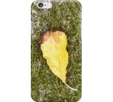 autumn 3 iPhone Case/Skin