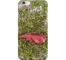 autumn 5 iPhone Case/Skin