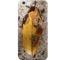 autumn 8 iPhone Case/Skin