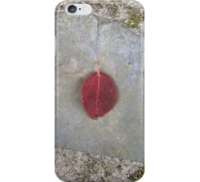 autumn 9 iPhone Case/Skin