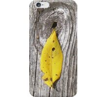 autumn 11 iPhone Case/Skin