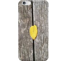 autumn 12 iPhone Case/Skin