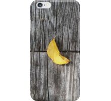 autumn 13 iPhone Case/Skin