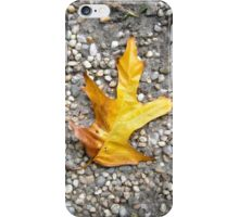 autumn 15 iPhone Case/Skin