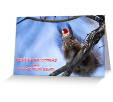 Santa Squirrel wishes you a Happy New Year  Greeting Card