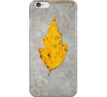 autumn 18 iPhone Case/Skin