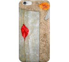 autumn 23 iPhone Case/Skin