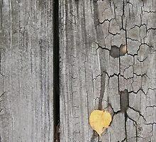 autumn 27 by arteology