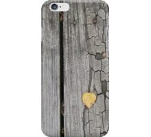 autumn 27 iPhone Case/Skin