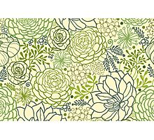 Succulent garden line art pattern Photographic Print