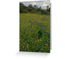 wildflowers lion lookout  Greeting Card