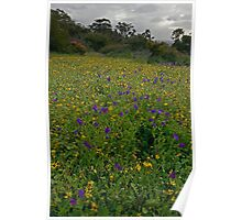 wildflowers lion lookout  Poster