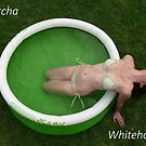 A Little Pool - adv by Sorcha Whitehorse ©