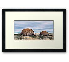 Glyptodon Framed Print