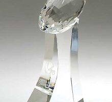 Glass Football Trophy by edcocomp
