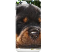 Cute Close Up Of A Sleepy Rottweiler Puppy iPhone Case/Skin