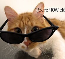 Birthday Humor - You're HOW Old? Cat by MoMoCards