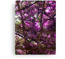 Amalfi Purple Canvas Print