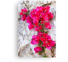 Amalfi Red Canvas Print
