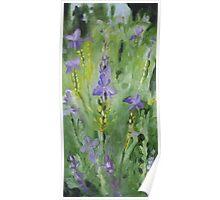 Purple Garden Poster