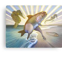 A Fish Called Wander Metal Print