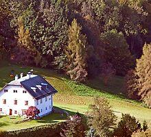 Austrian Farm House by phil decocco
