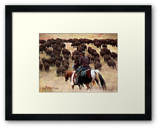 Driving The Herd by Susan Bergstrom