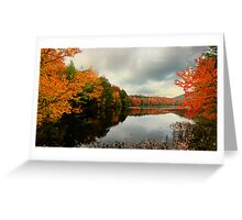 Lac Gale Greeting Card