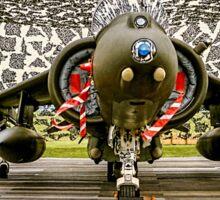 Harrier GR.7 ZD407 hiding Sticker