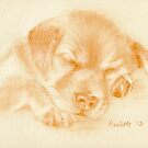 Labrador Puppy - original pastel drawing by Paulette Farrell