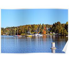 Lake view in autumn Poster