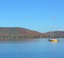 Sailing in autumn colours by marchello