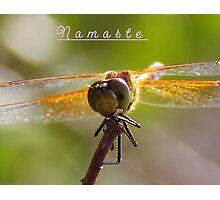 Namaste` Photographic Print