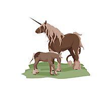 Forest Unicorns Photographic Print