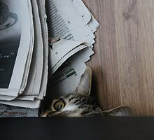 Iz only reading da paper innit! by Ladymoose