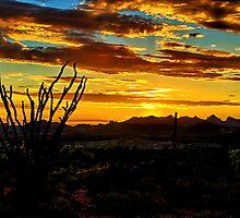 The Spirit of the Southwest  by Saija  Lehtonen