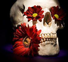 Sugar Skull by sasshaw