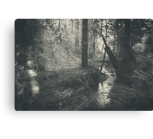 In This Silence Canvas Print