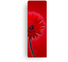 Red Painted Daisy Canvas Print