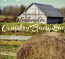 Country Bumpkin banner by Heather Crough